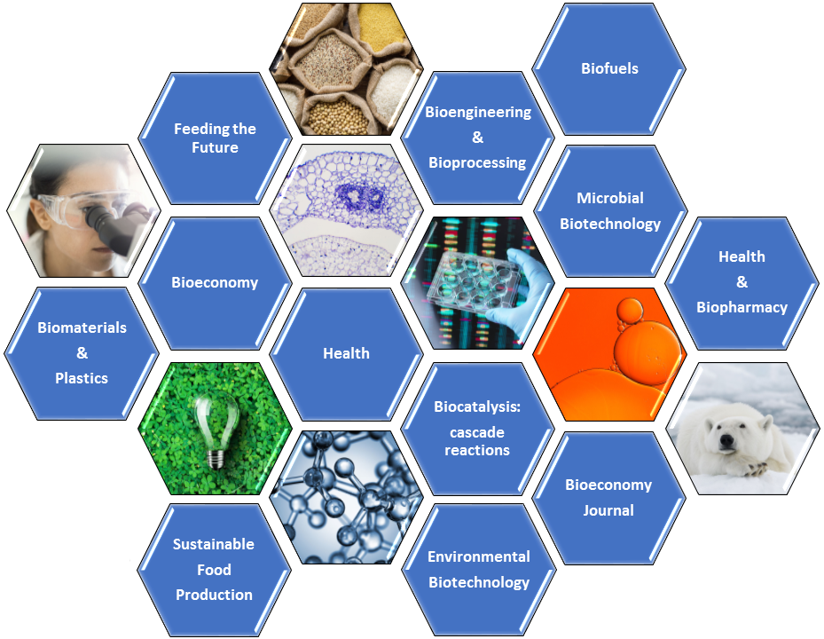 EFB2021 topic list: Bioeconomy, Microbial biotechnology, Biocatalysis: cascade reactions, Environmental biotechnology, Medical and biopharmaceutical, Bioengineering and bioprocessing, Biocatalysis: biohybrid processes, Sustainable food production- farm to fork strategy