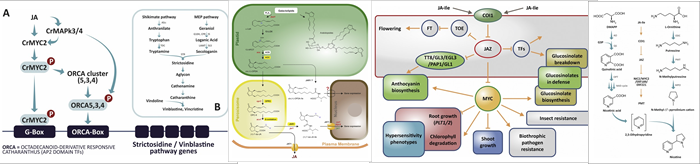 New Biotechnology -  - Banner