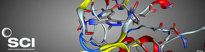 Kinase 2021: 9th SCI / RSC Symposium on Kinase Inhibitor Design