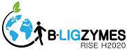 B-LigZymes -biotech  logo