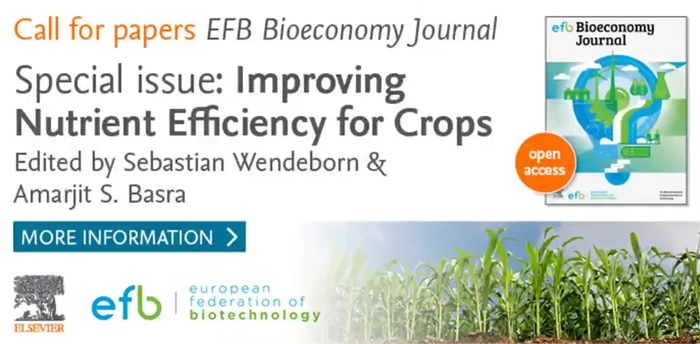 EFB Bioeconomy Journal Special Issue - Banner