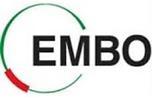 EMBO - logo