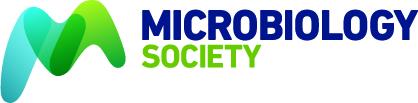m2p labs - logo